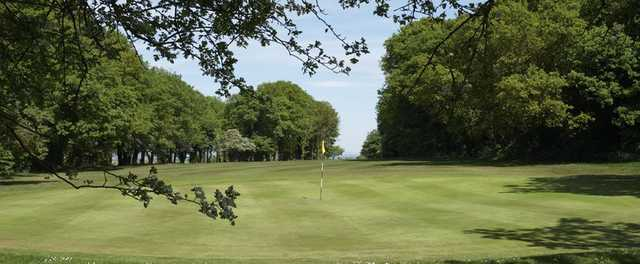 A greenside view of the 8th at Epsom