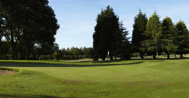 Strategically position sand traps surround the 3rd green at Cherry Lodge
