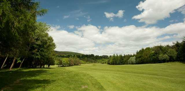 The tree lined fairways at Scoonie Golf Club