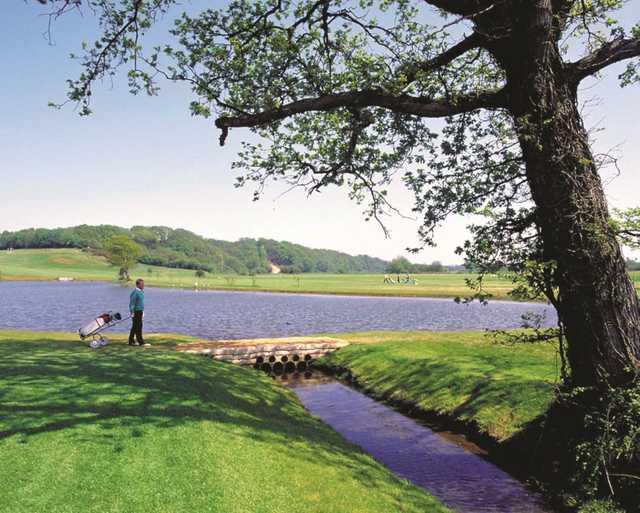 Wayward shots may end up in the lake