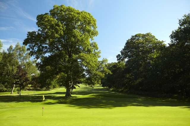 The 8th green at Kedleston