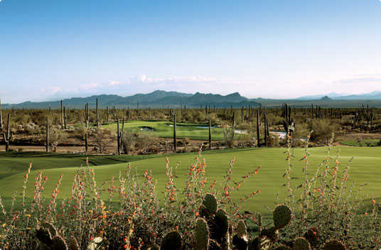 A view at Tortolita from The Golf Club at Dove Mountain