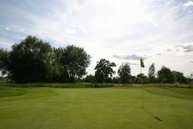 Green at Theale golf course