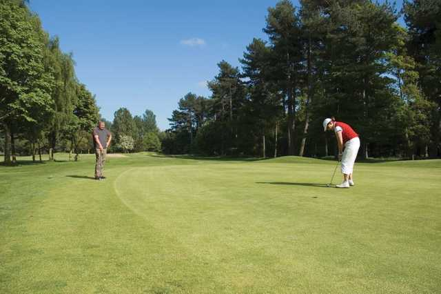 Golfer putting at Normanby Hall Golf Course