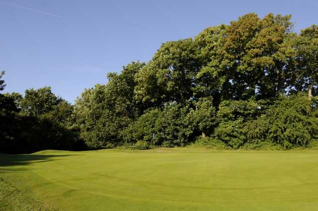 The 3rd green surrounded by trees at Shirley Park Golf Club