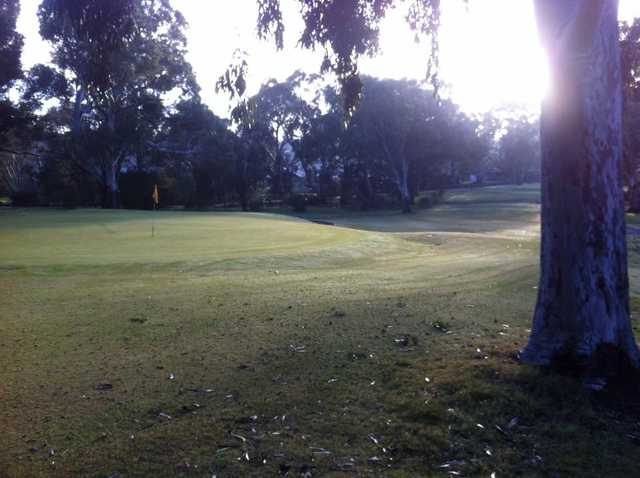 A view of a green at The Vines Golf Club of Reynella