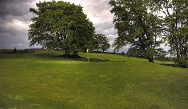 Green from Allendale Golf Club