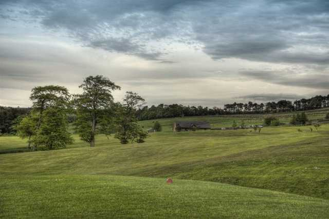 Allendale Golf Club - View from tee