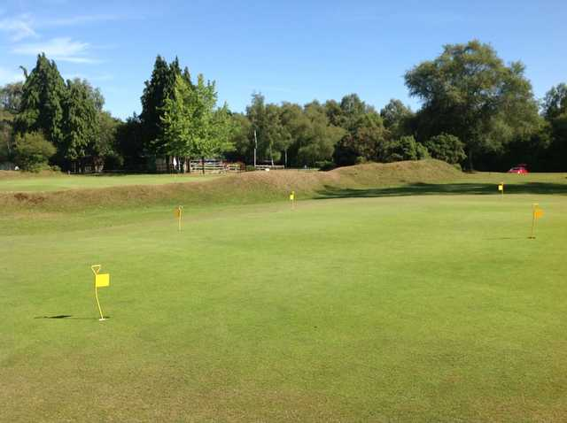 The putting green at New Forest Golf Club