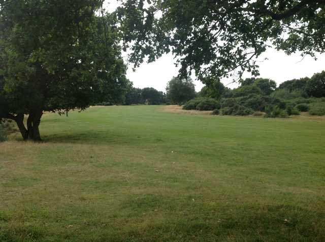 The tree lined 10th approach at Rushmere Golf Club