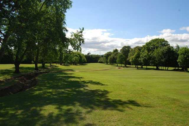 Narrow treelined fairway to enjoy at Holywood