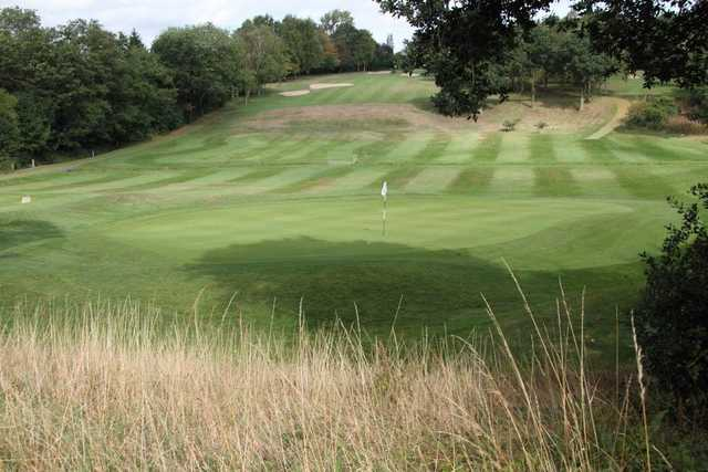 Image of the 6th green at Moseley GC