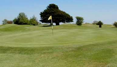 Well maintained putting surface at The Dyke Golf Club.