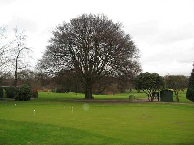 The putting green at tree back drop at Sale Golf Club
