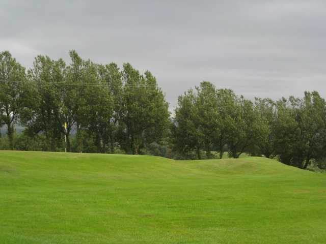 A view of the tree lined 5th green at Brookdale golf course
