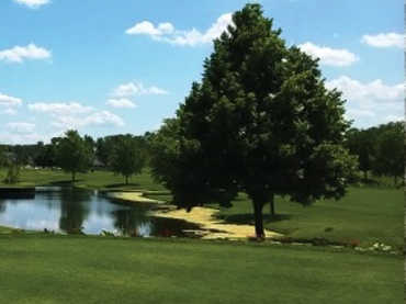 A view from East Course at Chicago Heights Park District (E.D. Sieruga)