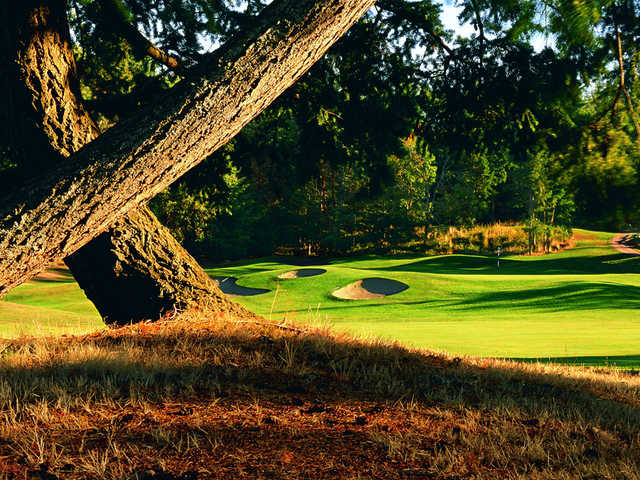 View of a green at Fairwinds Golf Club