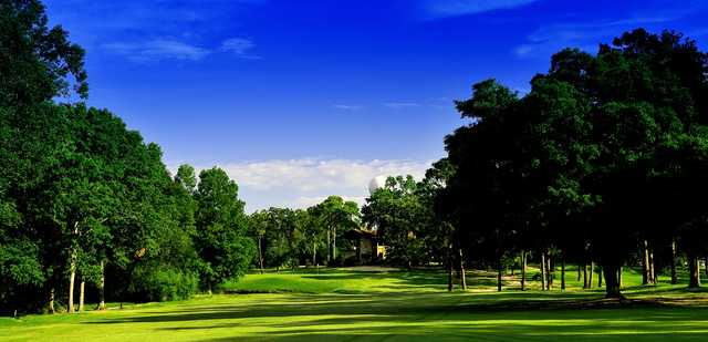 View from a fairway at Panorama Golf Club