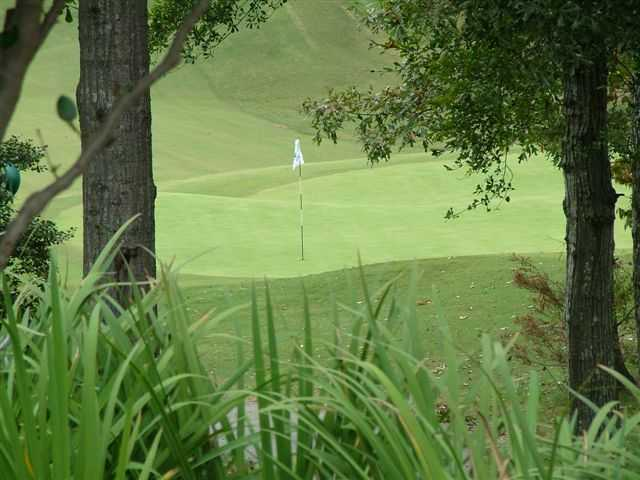 A view of a hole at Musgrove Mill Golf Club