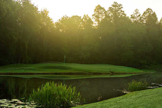 A view of a green surrounded by water at Tampa Palms Golf & Country Club