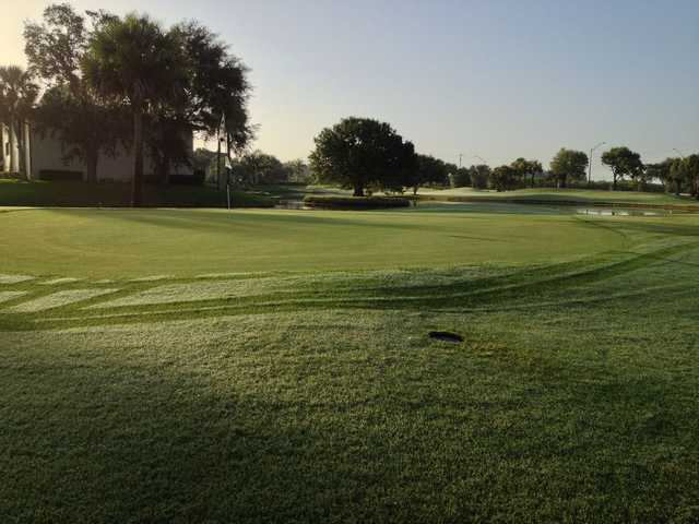A view of the 9th green at Vista Plantation Golf Course