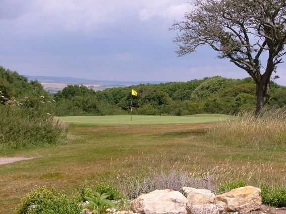 A view over the 11th green as seen at Came Down Golf Club.