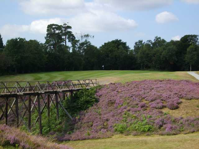 The 9th green at Addington Golf Club