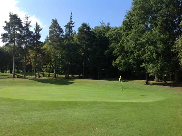 View of the 1st green and beautiful surrounding trees at Westerham Golf Club