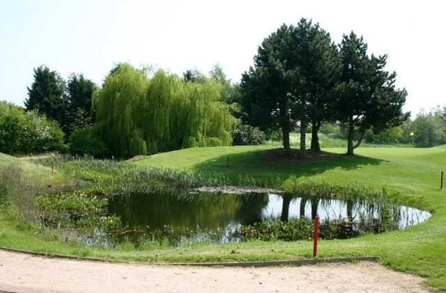 View of a pond and surrounds at Weston Turville Golf Club