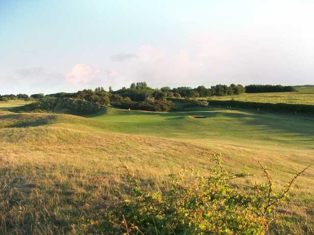View over the rough towards the 8th green at Seacroft