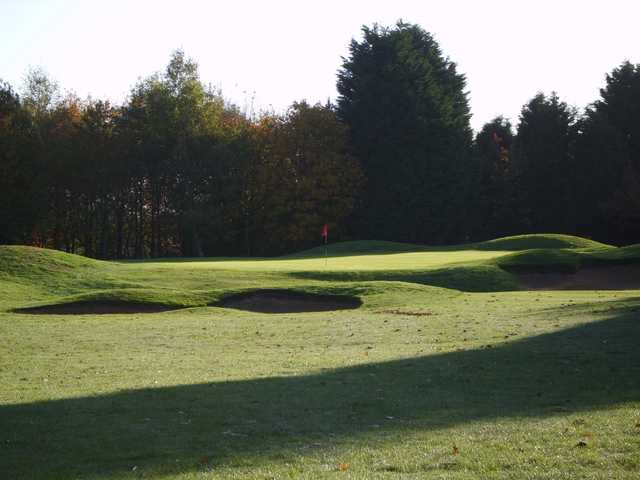 The approach to the 17th green surrounded by sandtraps on the West Berkshire Golf Course
