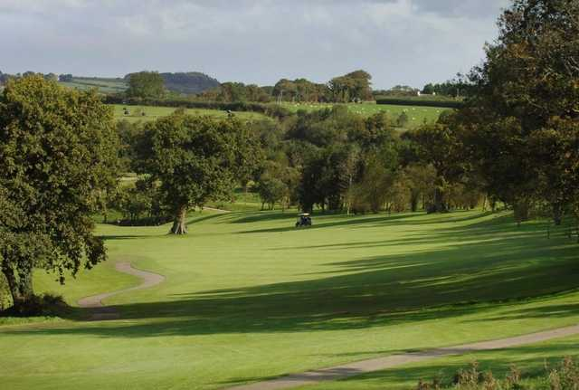 #6 at Trethorne GC