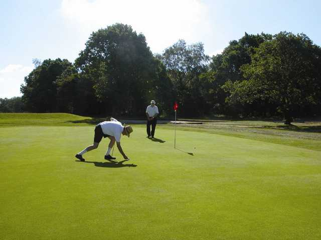 Superb putting greens at Bushey Hall Golf Club