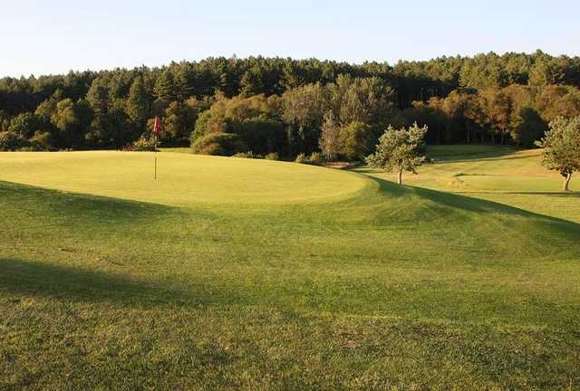The elevated 10th green as seen at Wareham Golf Club