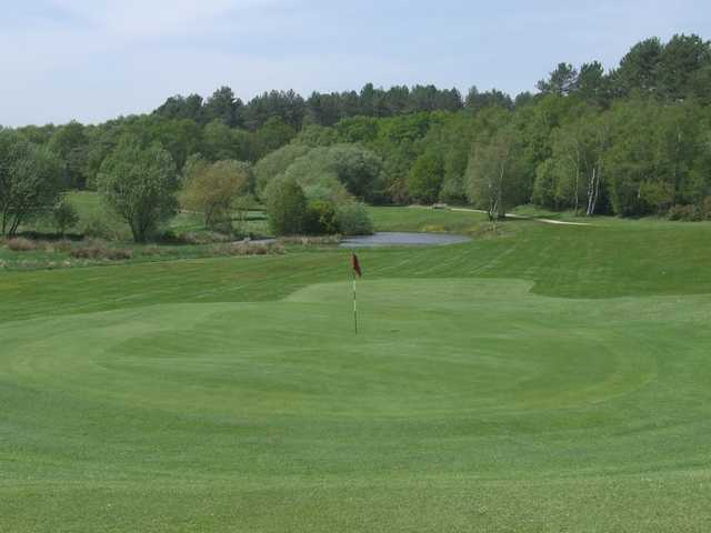 A view over the manicured 15th green at Wareham Golf Club