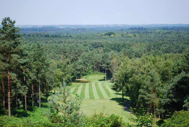 Stunning view of the 5th hole with a forest backdrop