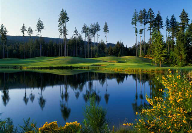 View of a green at Gold Mountain Golf Course