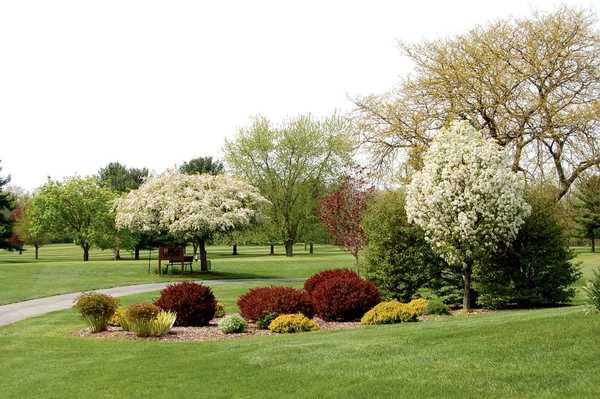 A spring view from Maplecrest Country Club