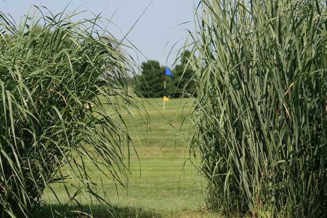 A view of a hole from the Links at Pretty Prairie