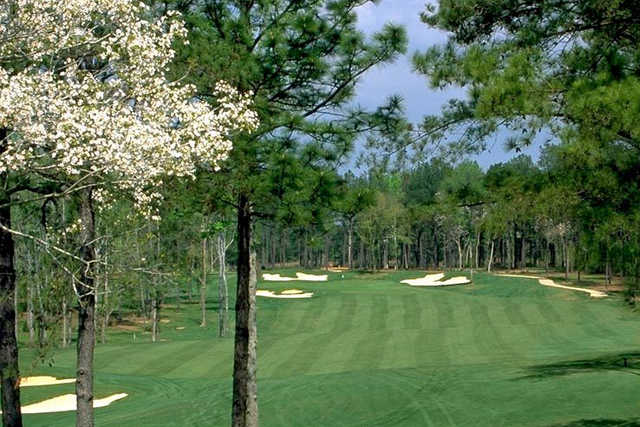 A view of hole #10 at Money Hill Golf & Country Club