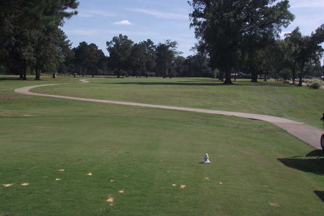 A view from the 11th tee at Green Oaks Golf Club