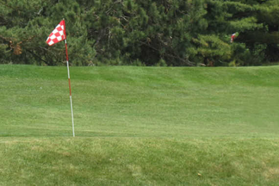 A view of green #8 at Willow Ridge Golf