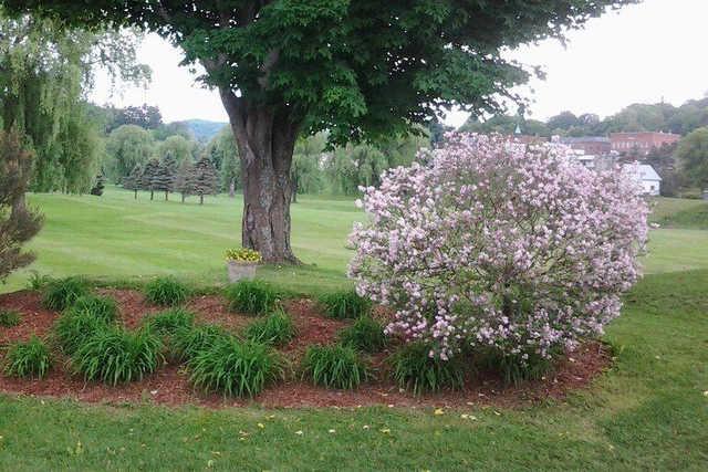 A view from Bradford Golf Club