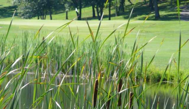 A view of a green at Lake City Golf