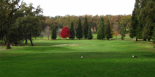 View from a tee box at Black Oak Golf Course