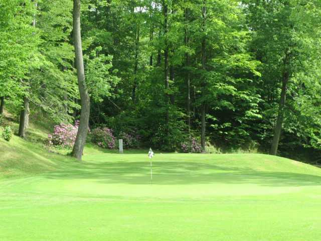 A sunny day view of a green at Maple Ridge Golf Course