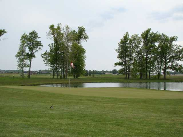A view of a green with water coming into play at Celina Lynx Golf Club