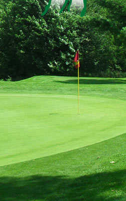 A view of a hole at Sunnyhill Golf & Recreation