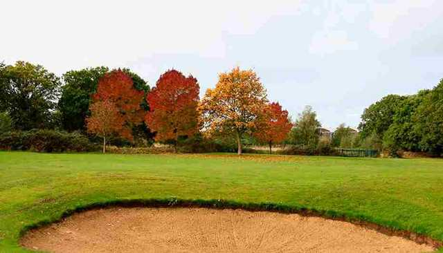 Bunker at David Lloyd Hampton Golf Course