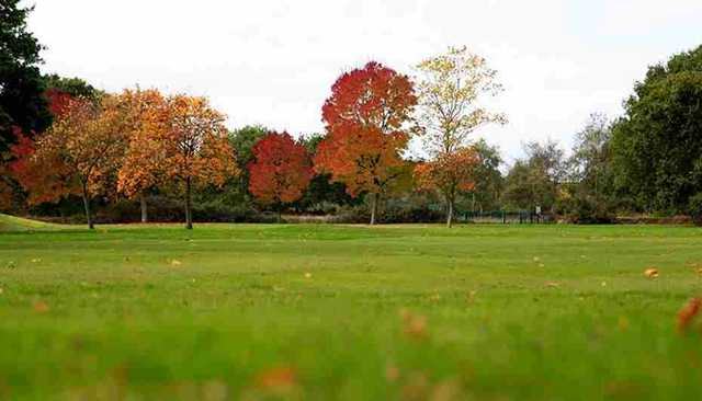 Fairway from David Lloyd Hampton Golf Course